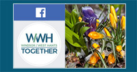The Regional Municipality of Windsor & West Hants on Facebook